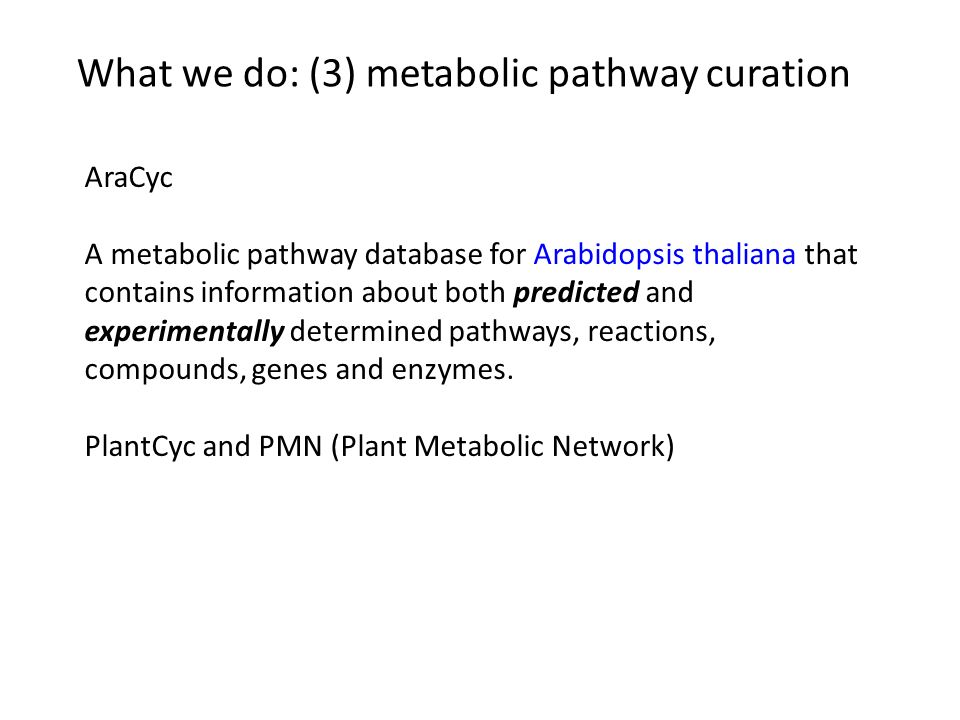 What we do: (3) metabolic pathway curation AraCyc A metabolic pathway database for Arabidopsis thaliana that contains information about both predicted