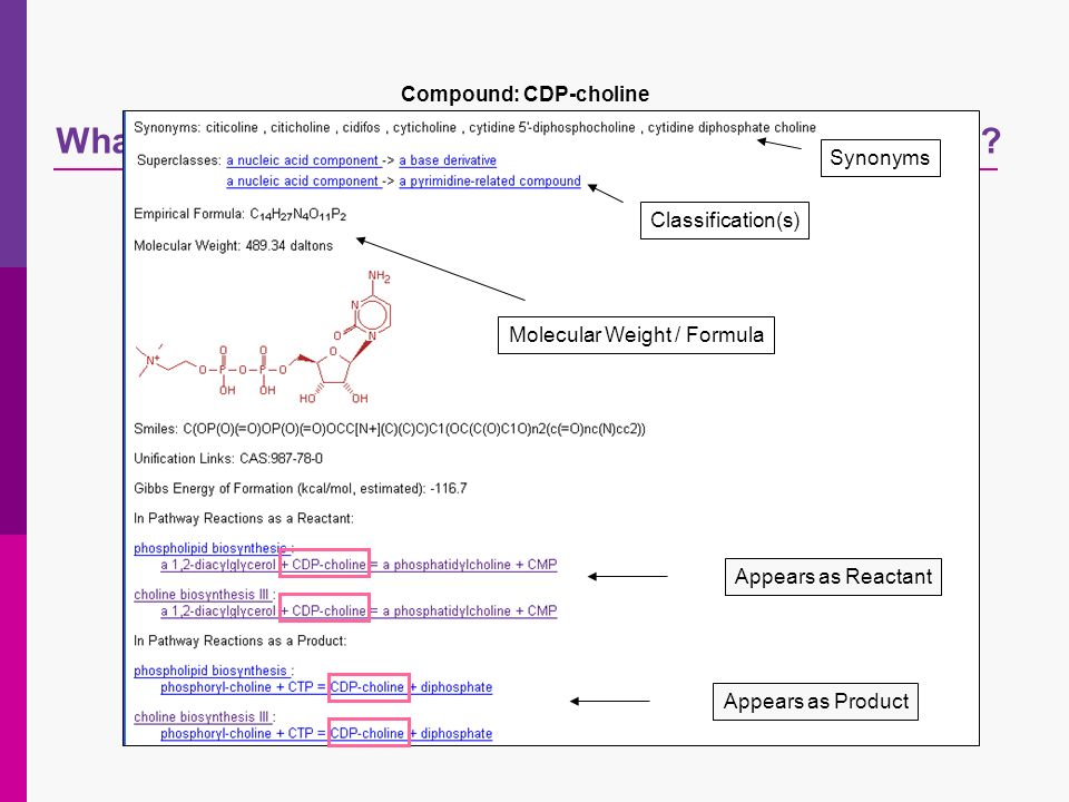 Whats in the metabolic pathway databases in the PMN? Compound: CDP-choline Synonyms Appears as Product Classification(s) Molecular Weight / Formula Ap