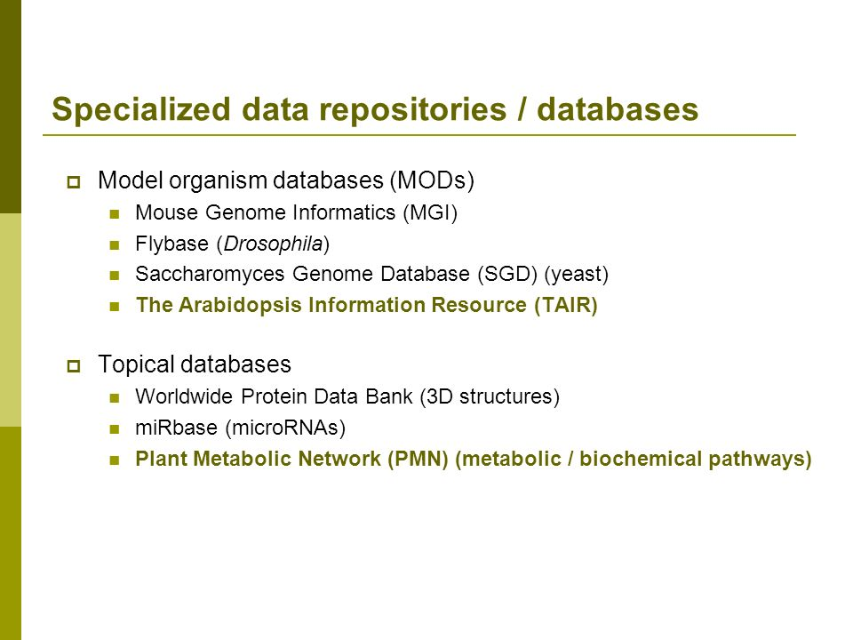 Model organism databases (MODs) Mouse Genome Informatics (MGI) Flybase (Drosophila) Saccharomyces Genome Database (SGD) (yeast) The Arabidopsis Inform