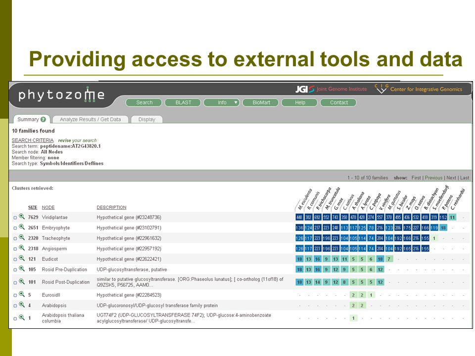 Providing access to external tools and data Tech team members and curators Provide links to external databases from every gene page