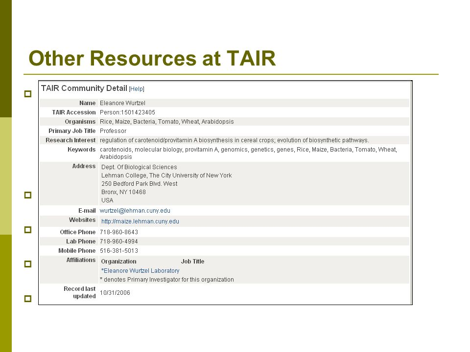 Other Resources at TAIR Ordering system for the Arabidopsis Biological Resource Center DNA stocks Seed stocks Community member information Arabidopsis