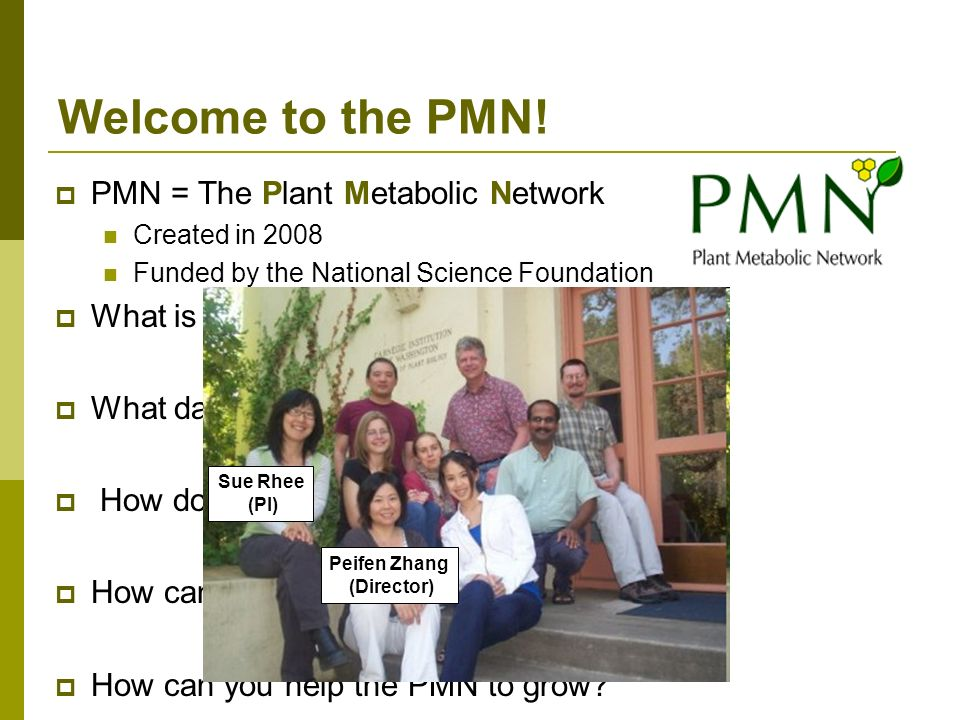 PMN = The Plant Metabolic Network Created in 2008 Funded by the National Science Foundation What is the PMN.