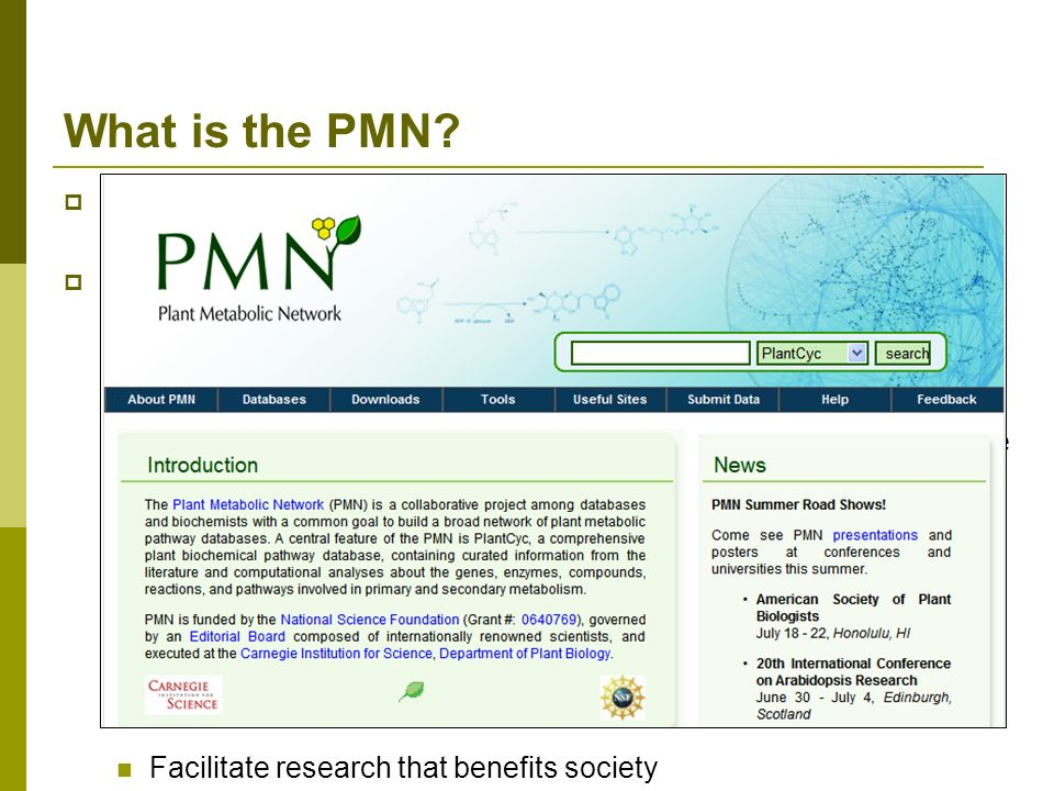 What is the PMN? A Network of Plant Metabolic Pathway Databases and Communities Major goals: Create metabolic pathway databases to catalog all of the