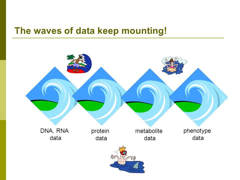 The waves of data keep mounting! DNA, RNA data protein data metabolite data phenotype data
