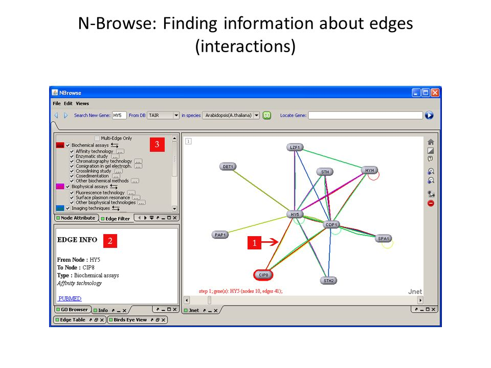 N-Browse: Finding information about edges (interactions)