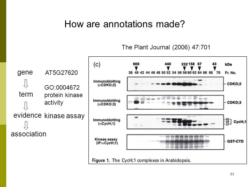 21 term evidence association gene How are annotations made.