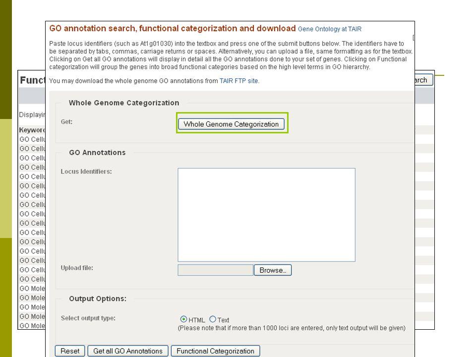 GO categorization