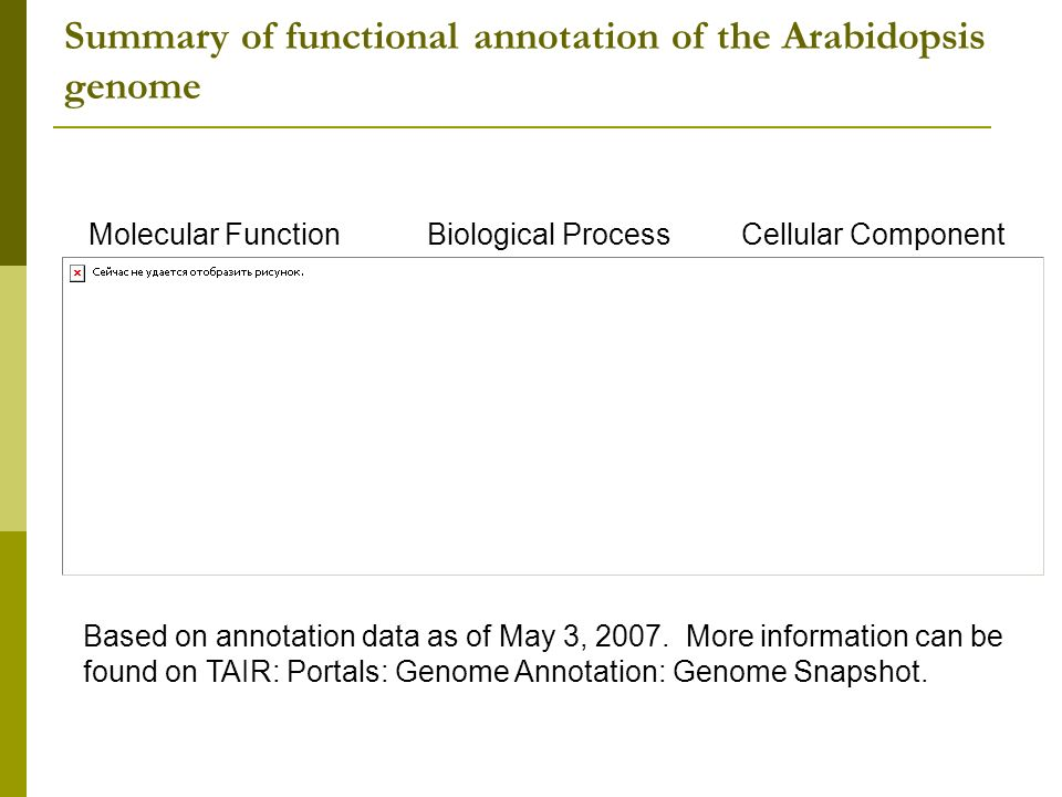 Summary of functional annotation of the Arabidopsis genome Based on annotation data as of May 3, 2007.