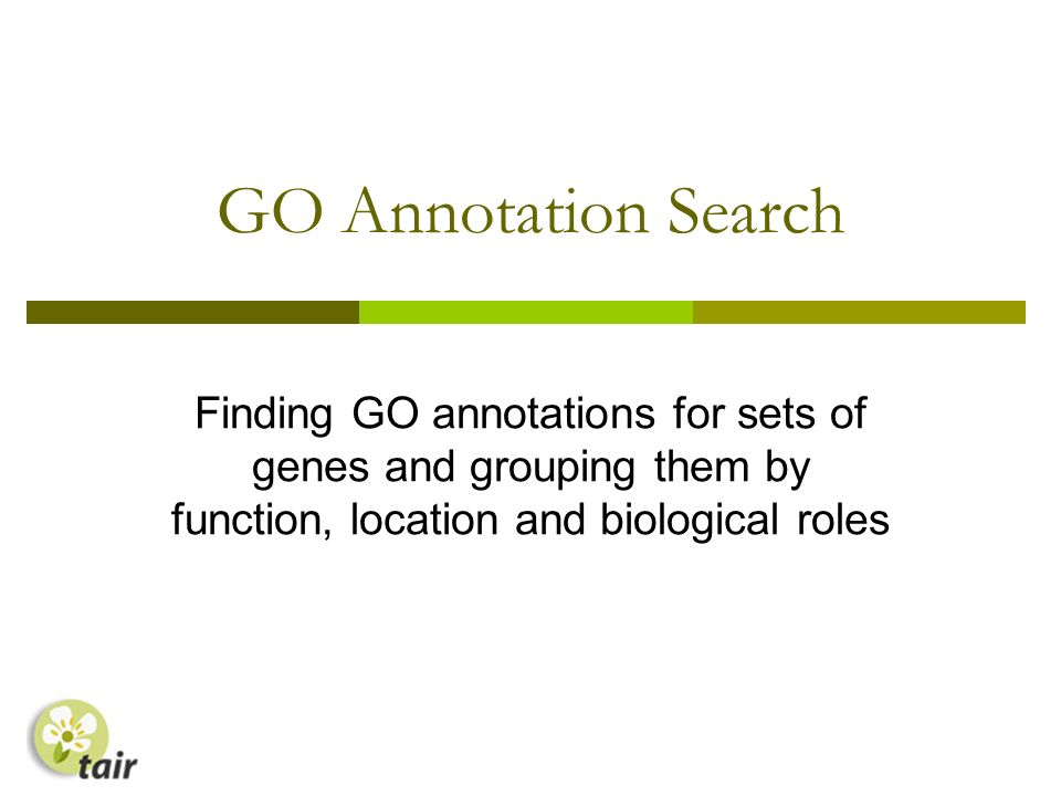 GO Annotation Search Finding GO annotations for sets of genes and grouping them by function, location and biological roles