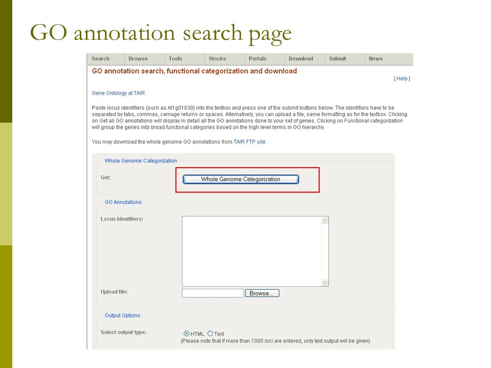 GO annotation search page