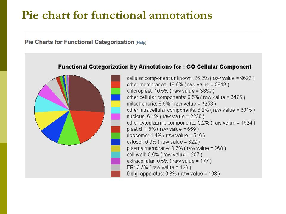 Pie chart for functional annotations