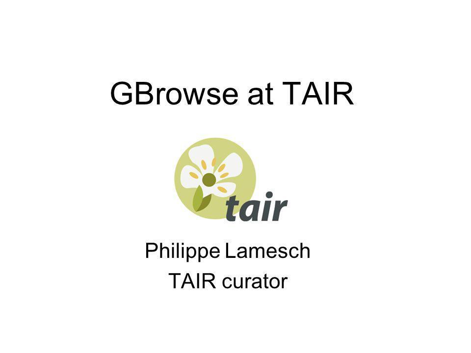 GBrowse at TAIR Philippe Lamesch TAIR curator