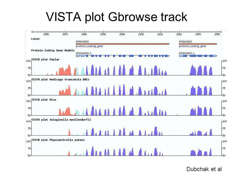 VISTA plot Gbrowse track Dubchak et al