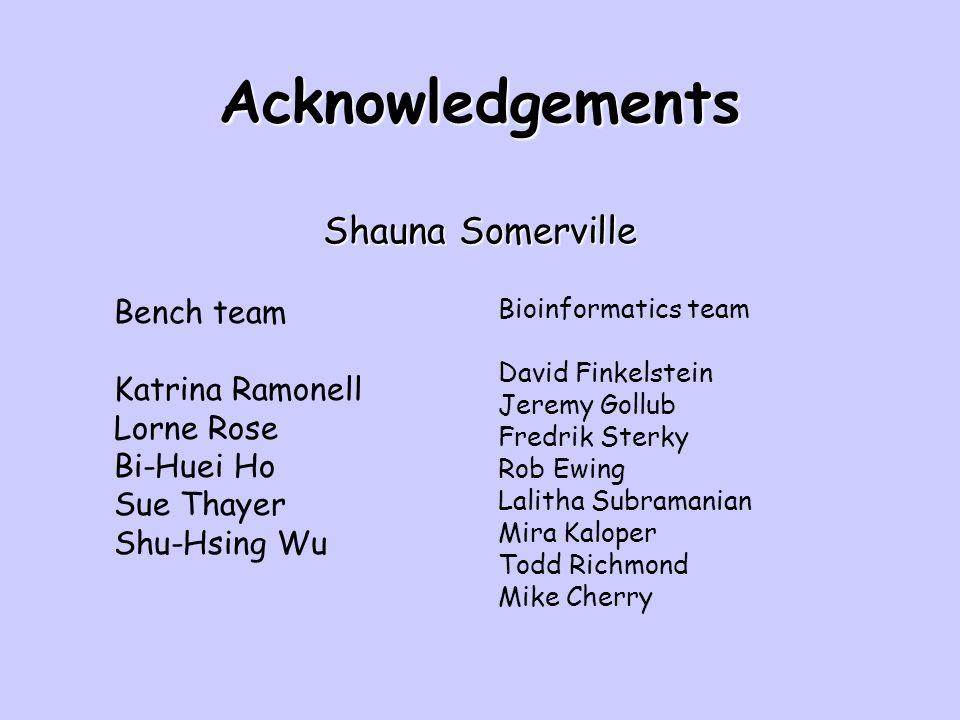 Acknowledgements Shauna Somerville Bench team Katrina Ramonell Lorne Rose Bi-Huei Ho Sue Thayer Shu-Hsing Wu Bioinformatics team David Finkelstein Jer