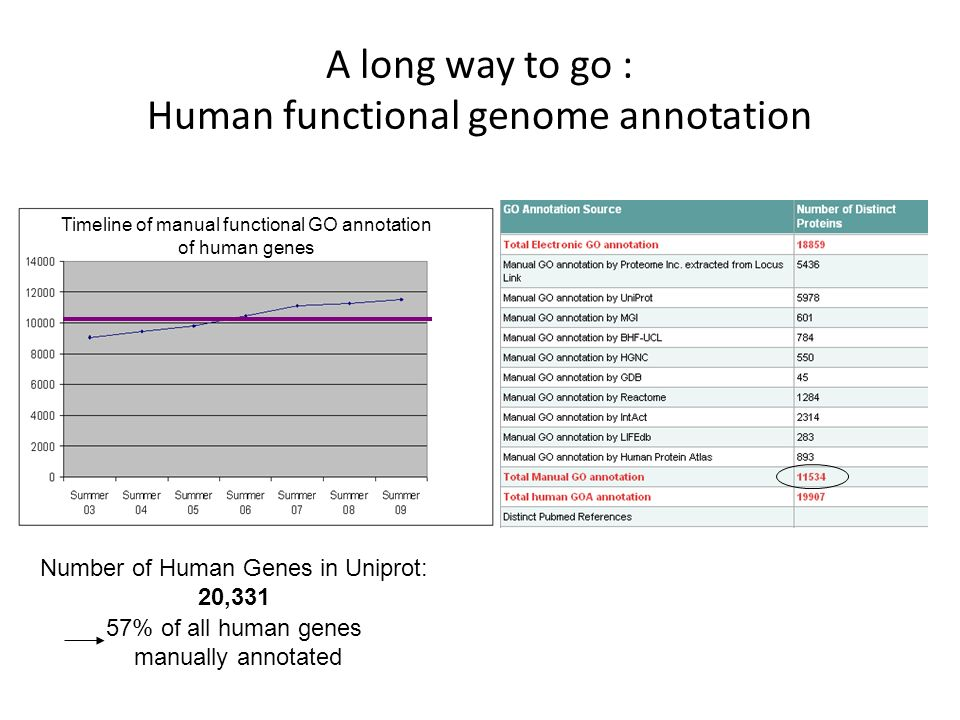 A long way to go : Human functional genome annotation Number of Human Genes in Uniprot: 20,331 Timeline of manual functional GO annotation of human ge