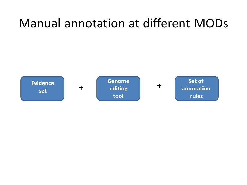 Manual annotation at different MODs Genome editing tool Evidence set Set of annotation rules + +
