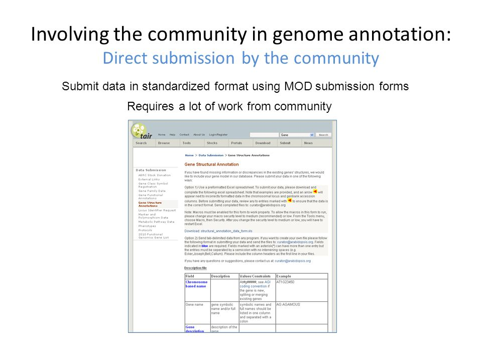 Involving the community in genome annotation: Direct submission by the community Submit data in standardized format using MOD submission forms Requires a lot of work from community