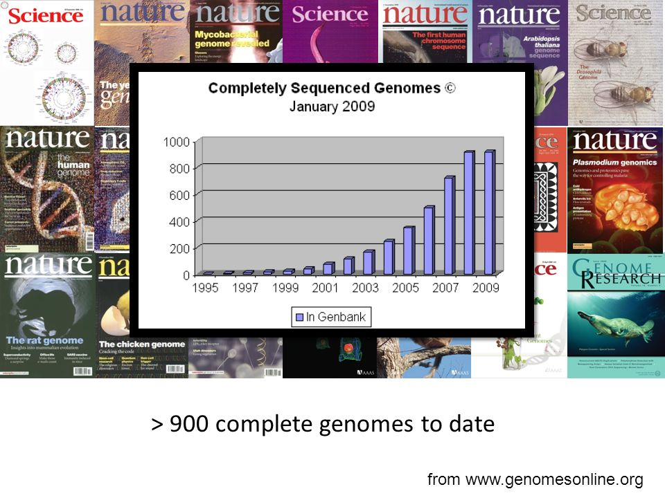 > 900 complete genomes to date from www.genomesonline.org