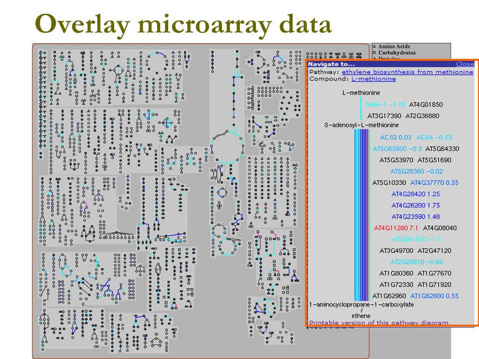 Overlay microarray data