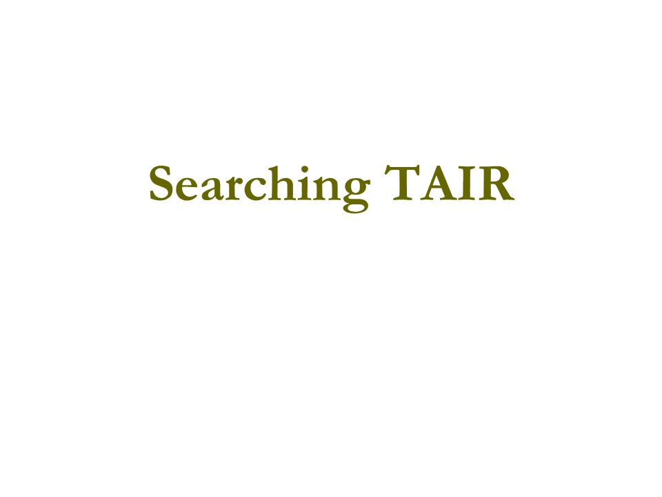 Searching TAIR