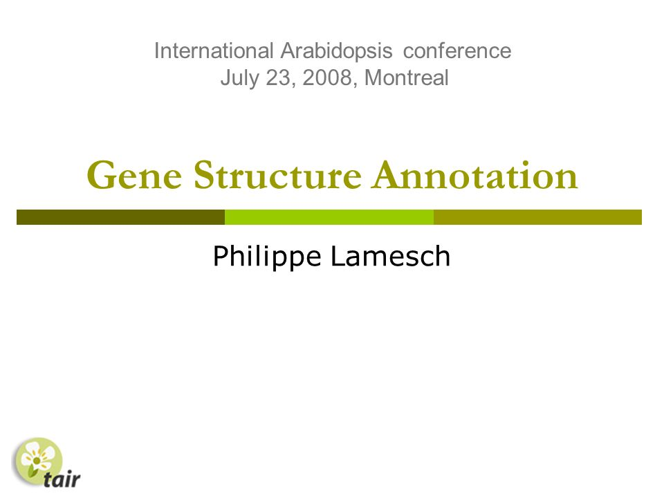Gene Structure Annotation Philippe Lamesch International Arabidopsis conference July 23, 2008, Montreal