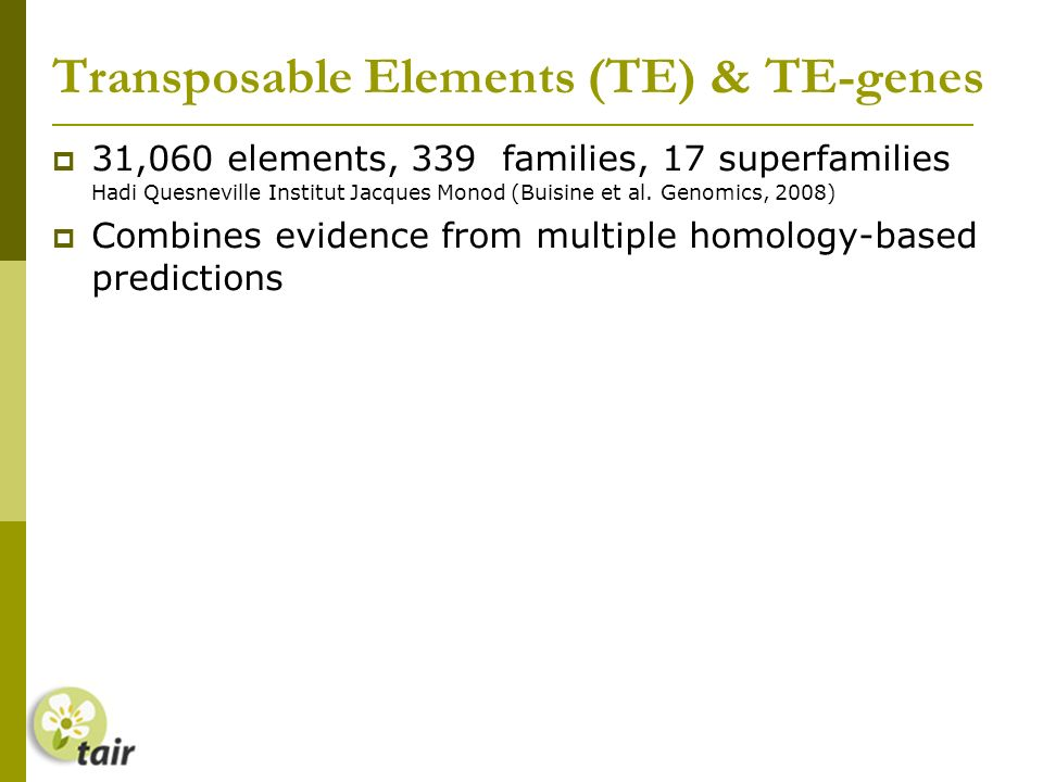 Transposable Elements (TE) & TE-genes 31,060 elements, 339 families, 17 superfamilies Hadi Quesneville Institut Jacques Monod (Buisine et al.