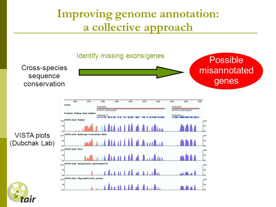 Improving genome annotation: a collective approach Identify missing exons/genes Possible misannotated genes Cross-species sequence conservation VISTA plots (Dubchak Lab)