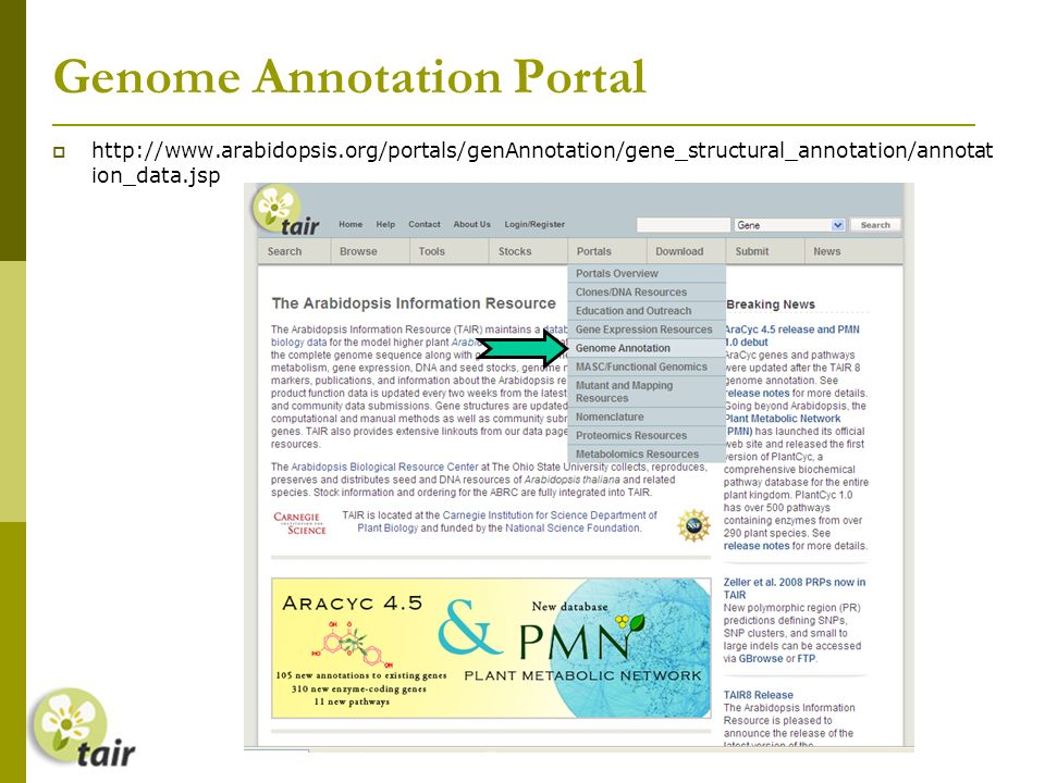 Genome Annotation Portal   ion_data.jsp