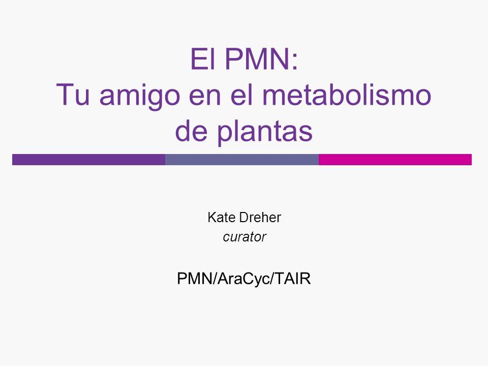 El PMN: Tu amigo en el metabolismo de plantas Kate Dreher curator PMN/AraCyc/TAIR