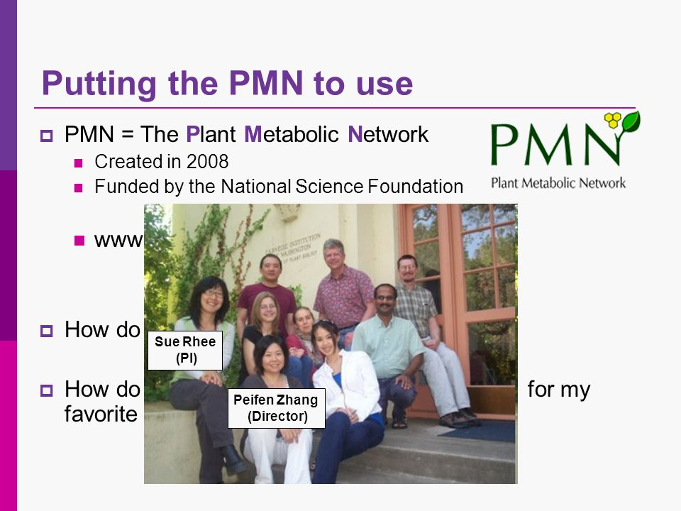 PMN = The Plant Metabolic Network Created in 2008 Funded by the National Science Foundation www.