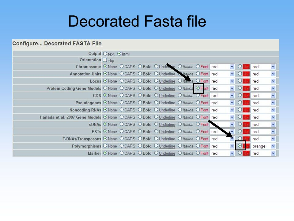 Decorated Fasta file