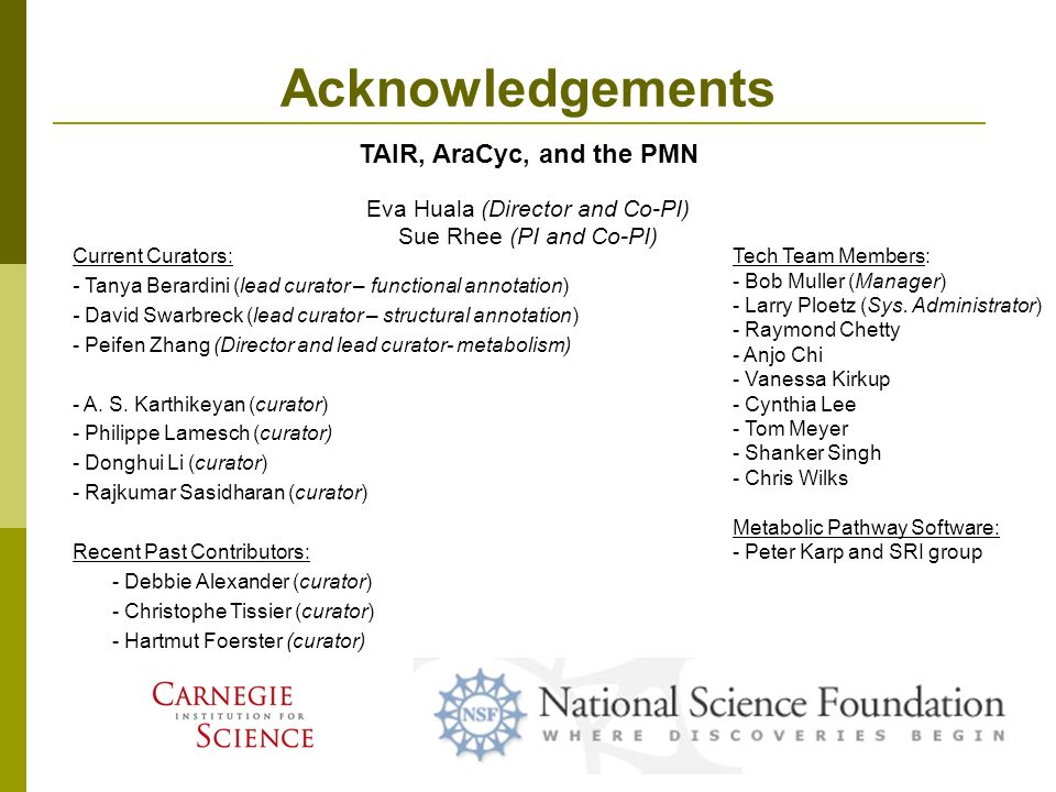 Acknowledgements TAIR, AraCyc, and the PMN Current Curators: - Tanya Berardini (lead curator – functional annotation) - David Swarbreck (lead curator – structural annotation) - Peifen Zhang (Director and lead curator- metabolism) - A.