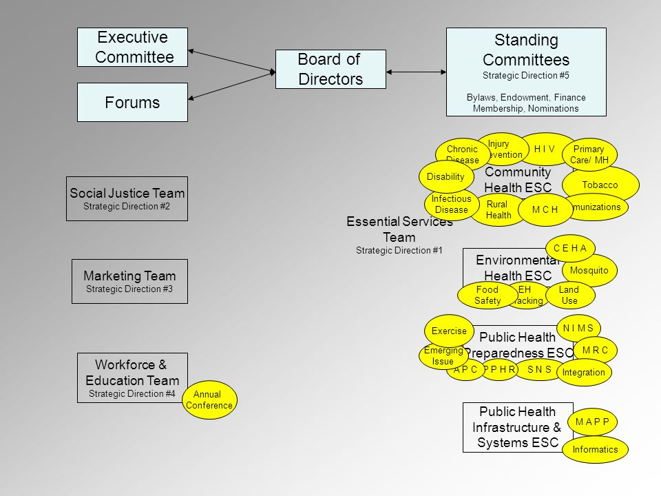 Executive Committee Forums Board of Directors Standing Committees Strategic Direction #5 Bylaws, Endowment, Finance Membership, Nominations Marketing Team Strategic Direction #3 Social Justice Team Strategic Direction #2 Workforce & Education Team Strategic Direction #4 Environmental Health ESC Community Health ESC Public Health Preparedness ESC Public Health Infrastructure & Systems ESC H I V Rural Health Tobacco Immunizations Annual Conference EH Tracking Mosquito Land Use Food Safety M A P P Informatics N I M S S N S M R C Integration Injury Prevention C E H A P P H R M C H Primary Care/ MH Essential Services Team Strategic Direction #1 Chronic Disease Infectious Disease Disability A P C Emerging Issue Exercise