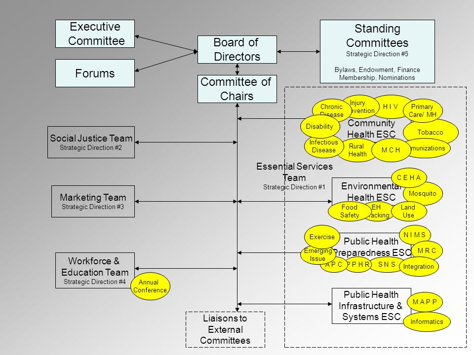 Executive Committee Forums Board of Directors Standing Committees Strategic Direction #5 Bylaws, Endowment, Finance Membership, Nominations Committee of Chairs Marketing Team Strategic Direction #3 Social Justice Team Strategic Direction #2 Workforce & Education Team Strategic Direction #4 Environmental Health ESC Community Health ESC Public Health Preparedness ESC Public Health Infrastructure & Systems ESC Liaisons to External Committees Annual Conference Essential Services Team Strategic Direction #1 H I V Rural Health Tobacco Immunizations EH Tracking Mosquito Land Use Food Safety M A P P Informatics N I M S S N S M R C Integration Injury Prevention C E H A P P H R M C H Primary Care/ MH Chronic Disease Infectious Disease Disability A P C Emerging Issue Exercise