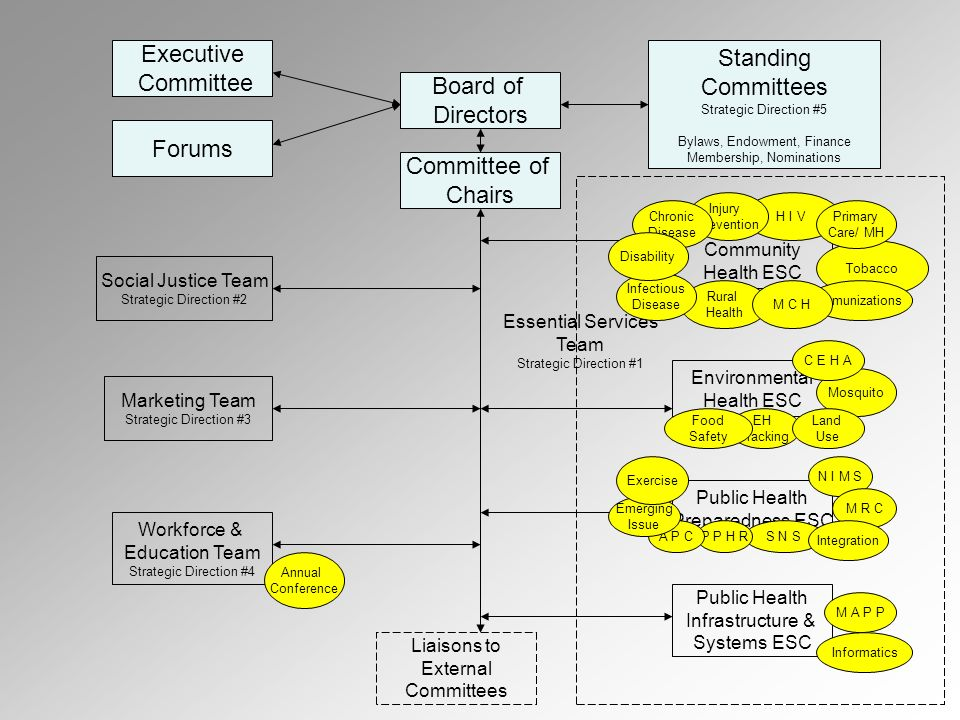 Executive Committee Forums Board of Directors Standing Committees Strategic Direction #5 Bylaws, Endowment, Finance Membership, Nominations Committee of Chairs Marketing Team Strategic Direction #3 Social Justice Team Strategic Direction #2 Workforce & Education Team Strategic Direction #4 Environmental Health ESC Community Health ESC Public Health Preparedness ESC Public Health Infrastructure & Systems ESC Annual Conference Liaisons to External Committees Essential Services Team Strategic Direction #1 H I V Rural Health Tobacco Immunizations EH Tracking Mosquito Land Use Food Safety M A P P Informatics N I M S S N S M R C Integration Injury Prevention C E H A P P H R M C H Primary Care/ MH Chronic Disease Infectious Disease Disability A P C Emerging Issue Exercise