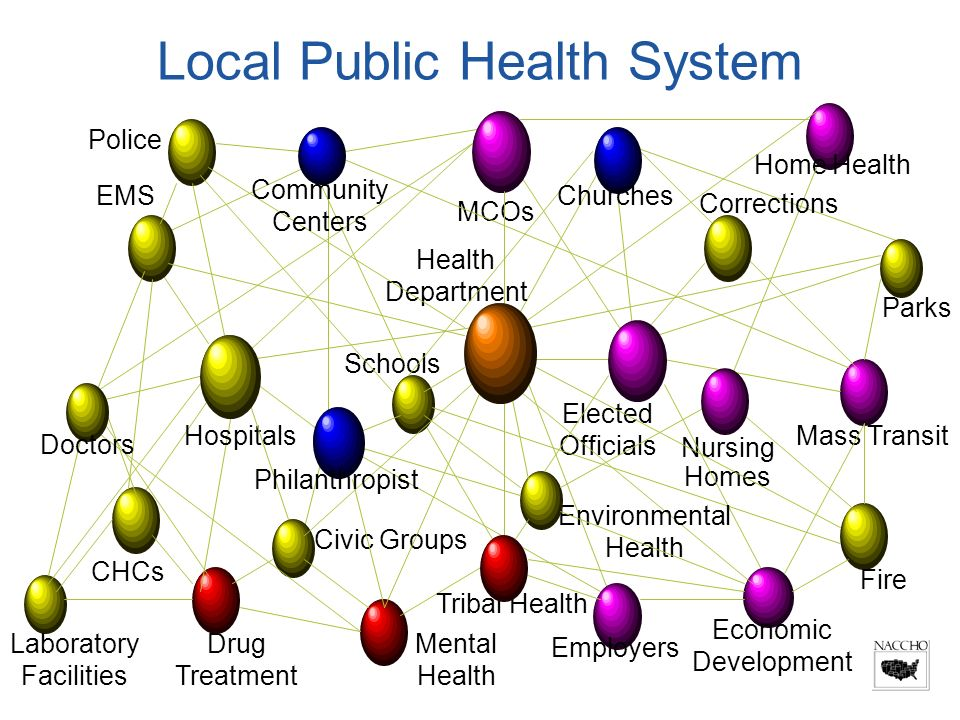 MCOs Home Health Parks Economic Development Mass Transit Employers Nursing Homes Mental Health Drug Treatment Civic Groups CHCs Laboratory Facilities