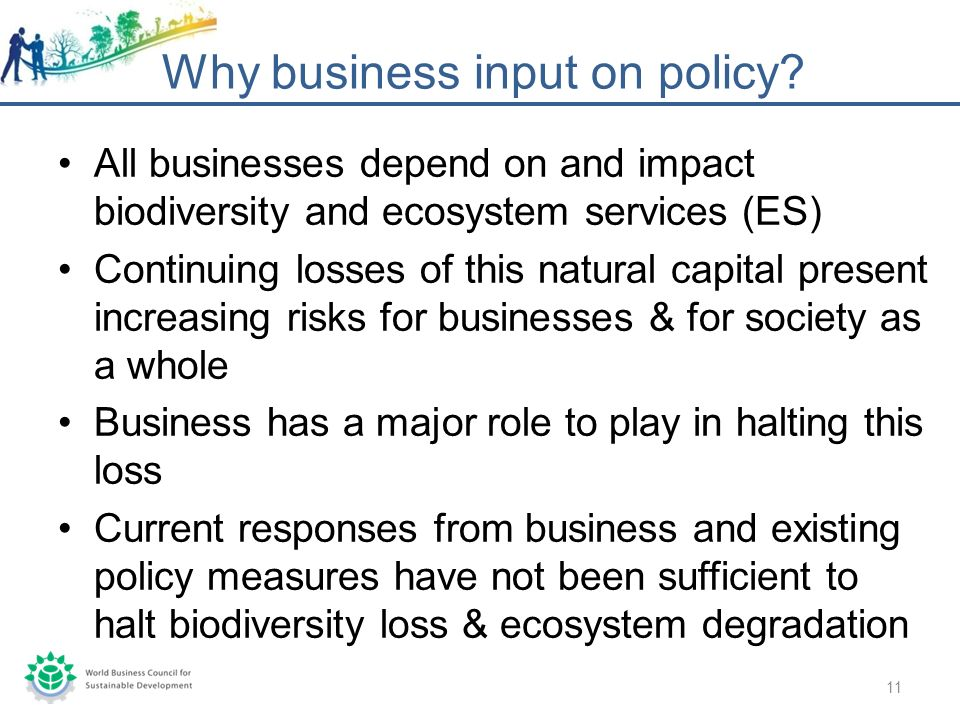 All businesses depend on and impact biodiversity and ecosystem services (ES) Continuing losses of this natural capital present increasing risks for businesses & for society as a whole Business has a major role to play in halting this loss Current responses from business and existing policy measures have not been sufficient to halt biodiversity loss & ecosystem degradation Why business input on policy.