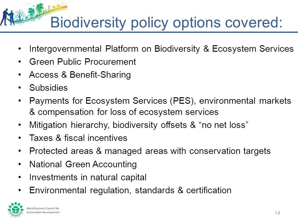 Intergovernmental Platform on Biodiversity & Ecosystem Services Green Public Procurement Access & Benefit-Sharing Subsidies Payments for Ecosystem Services (PES), environmental markets & compensation for loss of ecosystem services Mitigation hierarchy, biodiversity offsets & no net loss Taxes & fiscal incentives Protected areas & managed areas with conservation targets National Green Accounting Investments in natural capital Environmental regulation, standards & certification Biodiversity policy options covered: 14