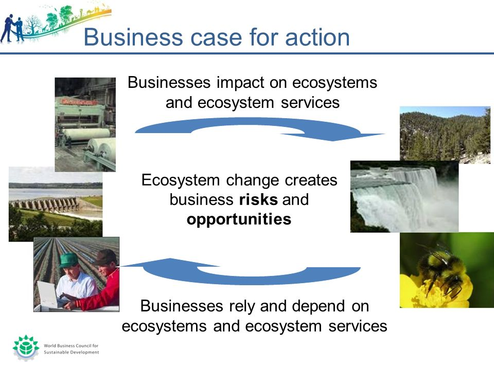 Businesses impact on ecosystems and ecosystem services Businesses rely and depend on ecosystems and ecosystem services Ecosystem change creates business risks and opportunities Business case for action