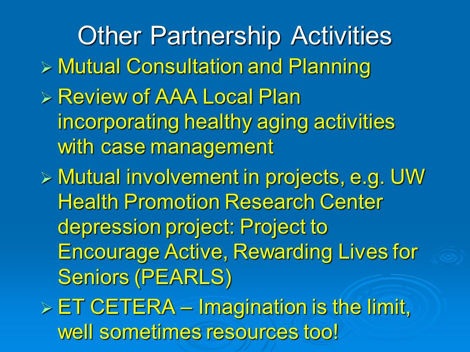 Other Partnership Activities Mutual Consultation and Planning Mutual Consultation and Planning Review of AAA Local Plan incorporating healthy aging activities with case management Review of AAA Local Plan incorporating healthy aging activities with case management Mutual involvement in projects, e.g.