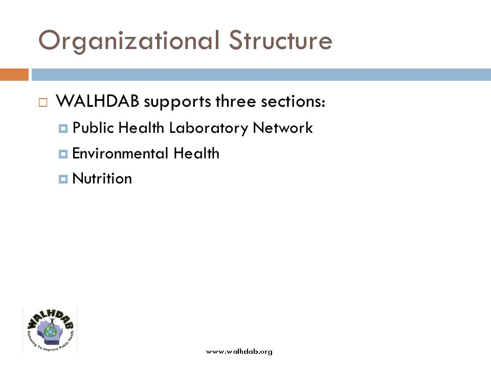 Strategic Plan (2007-2009) WALHDABs strategic plan outlines these key objectives: Strengthen advocacy efforts Educate local board of health members regarding WALHDABs vision and goals Strengthen organizational infrastructure Build stronger partnerships to protect and promote the publics health Improve member services to develop workforce and improve local practice