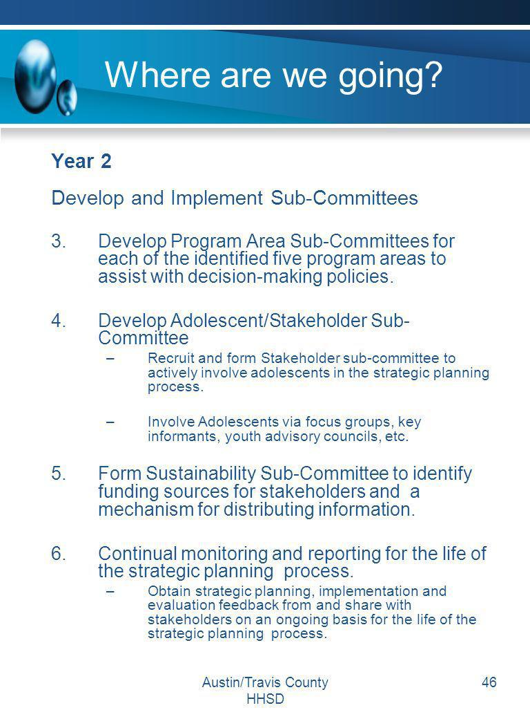 Austin/Travis County HHSD 46 Where are we going? Year 2 Develop and Implement Sub-Committees 3.Develop Program Area Sub-Committees for each of the ide