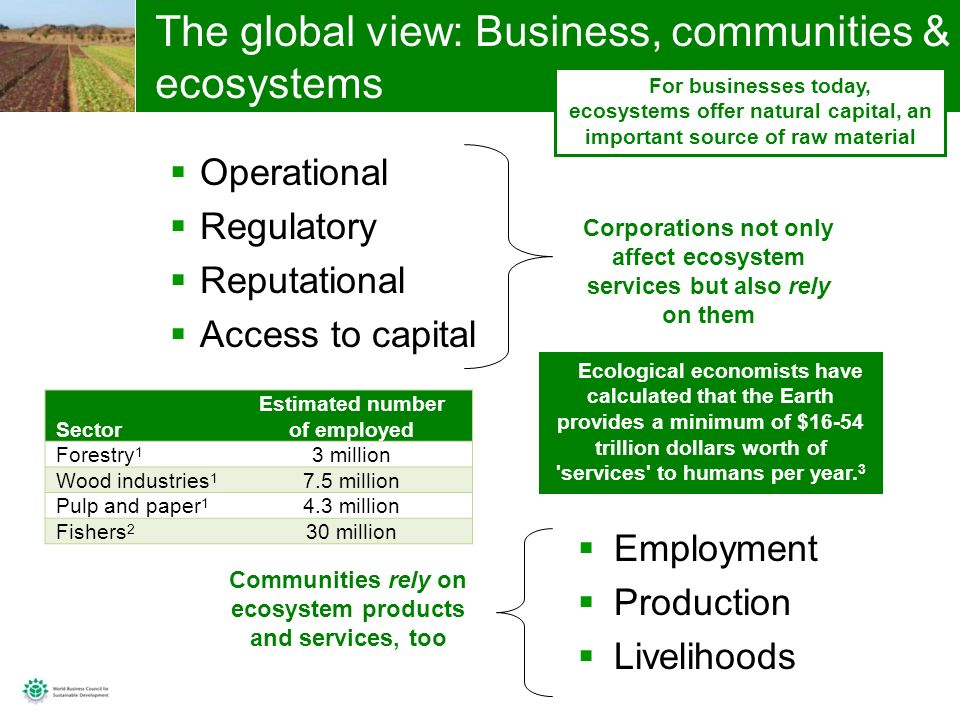 3 The global view: Business, communities & ecosystems Operational Regulatory Reputational Access to capital Corporations not only affect ecosystem services but also rely on them Communities rely on ecosystem products and services, too Employment Production Livelihoods For businesses today, ecosystems offer natural capital, an important source of raw material Ecological economists have calculated that the Earth provides a minimum of $16-54 trillion dollars worth of services to humans per year.