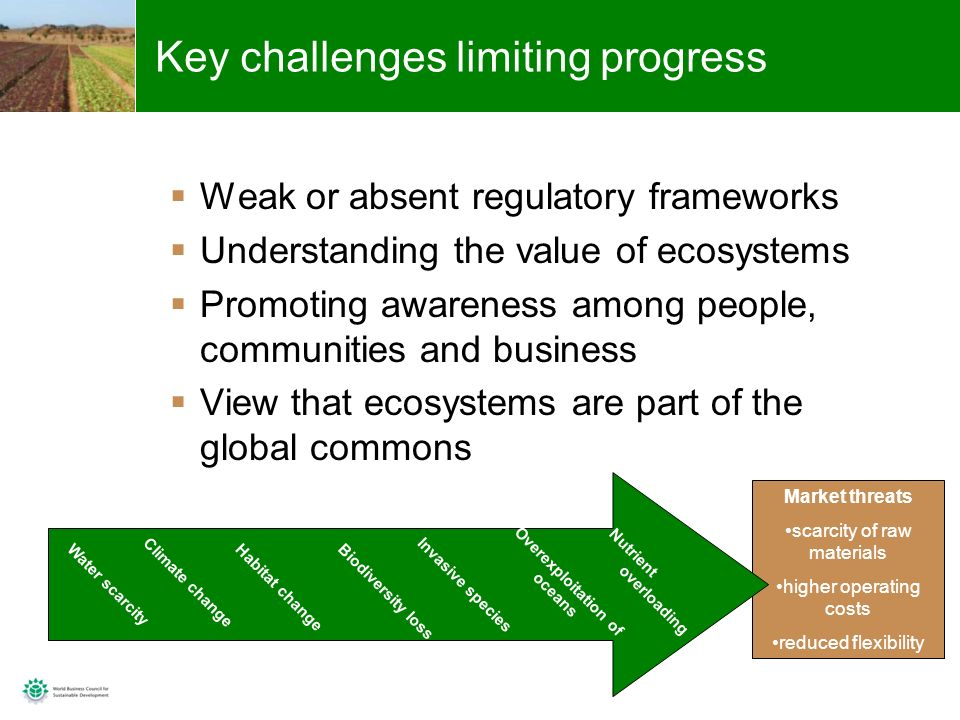 9 Market threats scarcity of raw materials higher operating costs reduced flexibility Key challenges limiting progress Weak or absent regulatory frameworks Understanding the value of ecosystems Promoting awareness among people, communities and business View that ecosystems are part of the global commons Water scarcity Climate change Habitat change Biodiversity loss Invasive species Overexploitation of oceans Nutrient overloading