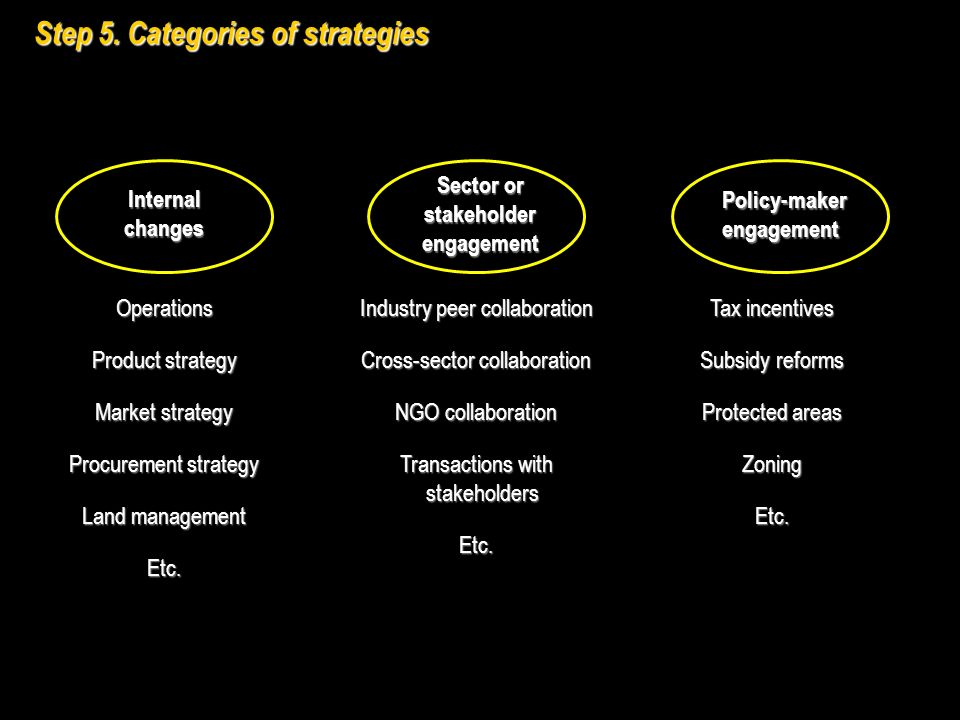 Step 5. Categories of strategies Internal changes Sector or stakeholder engagement Policy-maker engagement Operations Product strategy Market strategy