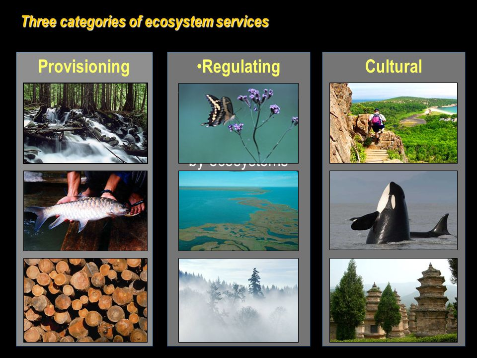 Cultural Nonmaterial benefits obtained from ecosystems Regulating Benefits obtained from control of natural processes by ecosystems Provisioning Goods or products obtained from ecosystems Three categories of ecosystem services