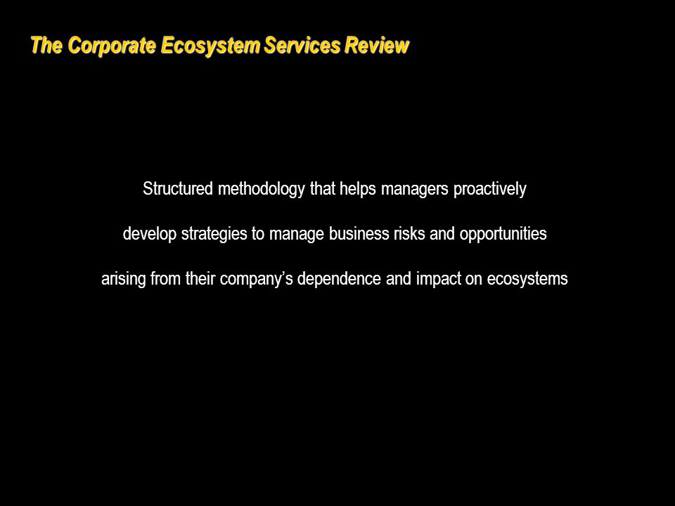 Business benefits Strengthen existing approaches to environmental managementStrengthen existing approaches to environmental management Identify business risks and opportunitiesIdentify business risks and opportunities Anticipate new markets and government policiesAnticipate new markets and government policies Improve stakeholder relationshipsImprove stakeholder relationships Demonstrate leadership in corporate sustainabilityDemonstrate leadership in corporate sustainability