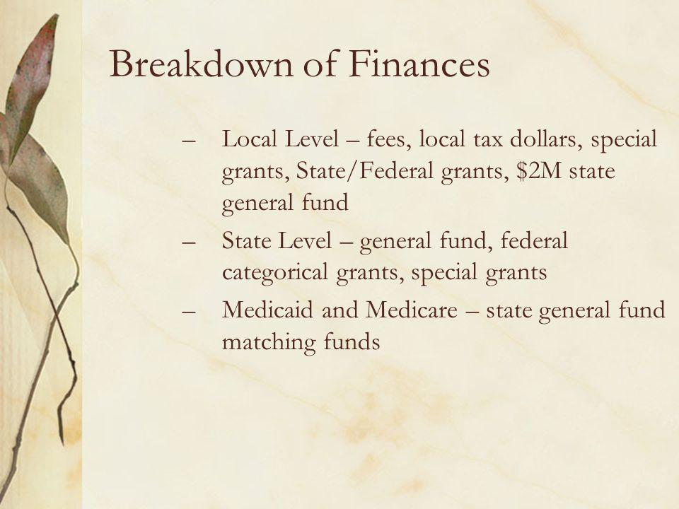 Breakdown of Finances –Local Level – fees, local tax dollars, special grants, State/Federal grants, $2M state general fund –State Level – general fund, federal categorical grants, special grants –Medicaid and Medicare – state general fund matching funds