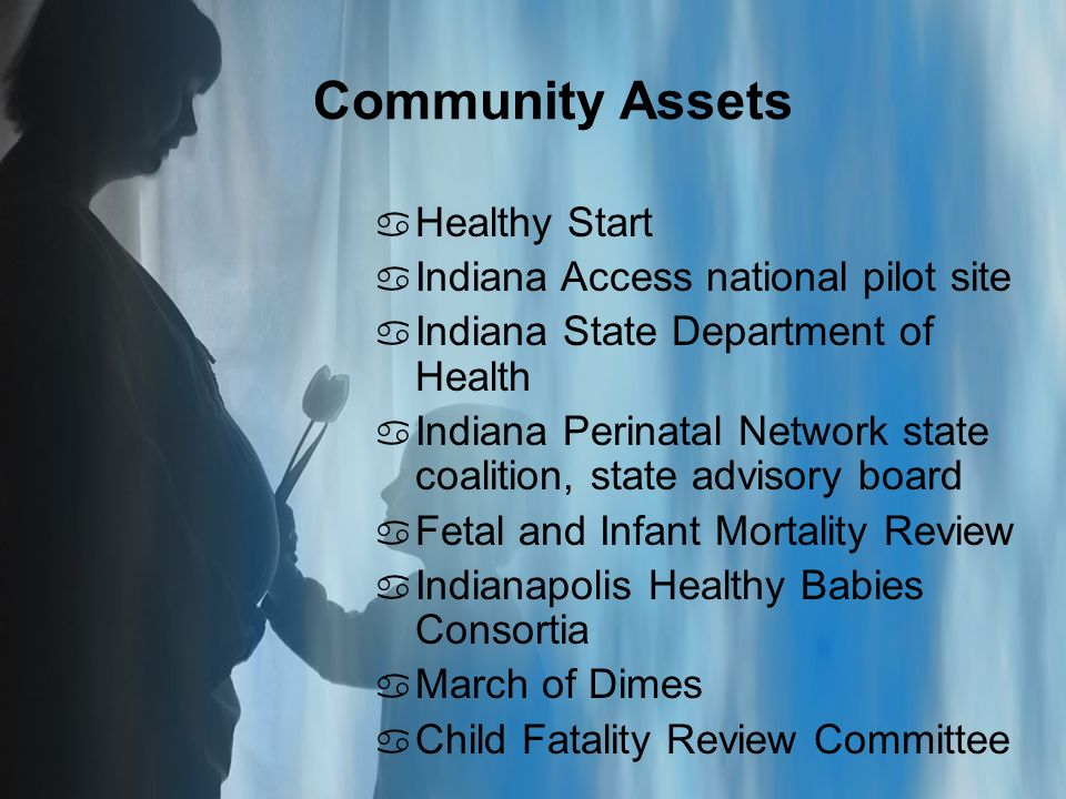 Community Assets a Healthy Start a Indiana Access national pilot site a Indiana State Department of Health a Indiana Perinatal Network state coalition, state advisory board a Fetal and Infant Mortality Review a Indianapolis Healthy Babies Consortia a March of Dimes a Child Fatality Review Committee