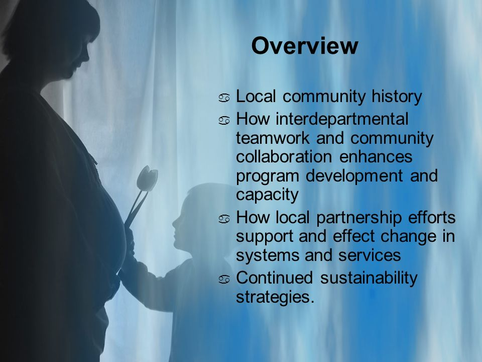 Overview a Local community history a How interdepartmental teamwork and community collaboration enhances program development and capacity a How local partnership efforts support and effect change in systems and services a Continued sustainability strategies.